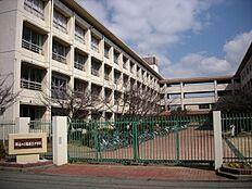 播磨南中学校…約700m