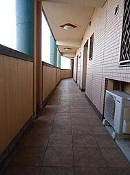 フェルト716[4階]の間取り
