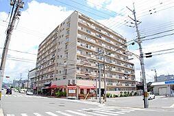 五条ローズハイツA棟[7階]の外観