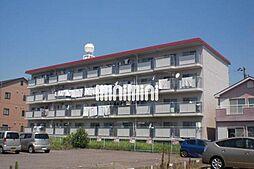パステルハイツ[1階]の外観