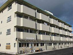 栃木県宇都宮市上大曽町の賃貸マンションの外観
