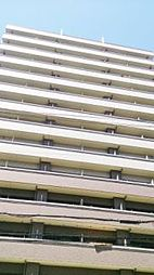プレジオ南堀江[13階]の外観