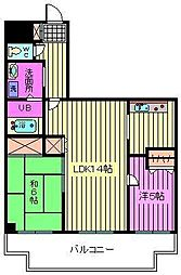 ファーストシティ大宮[5階]の間取り