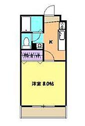 静岡県沼津市常盤町3丁目の賃貸マンションの間取り