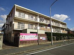 田島ビル[305号室]の外観