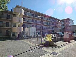 千葉県船橋市前原西8丁目の賃貸マンションの外観