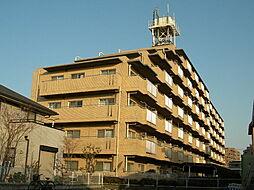 サンファミリー徳岡[4階]の外観