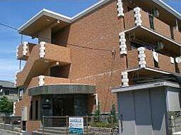 新潟県新潟市江南区諏訪の賃貸マンションの外観