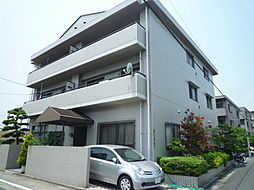 広島県広島市西区南観音5丁目の賃貸マンションの外観