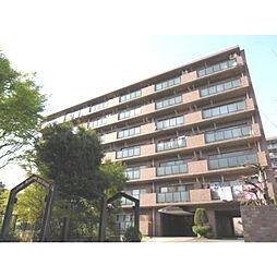 神奈川県厚木市恩名1丁目の賃貸マンションの外観