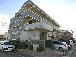 愛知県清須市西田中松本の賃貸マンションの外観