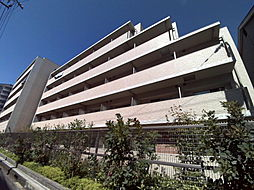 阪神本線 石屋川駅 徒歩5分の賃貸マンション