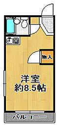 丸山ハイツ[3階]の間取り