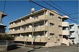 宮崎県宮崎市清武町正手2丁目の賃貸マンションの外観