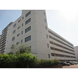 新潟駅南ハイツ[502号室]の外観