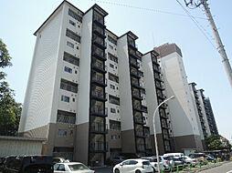 東京都狛江市東野川3丁目の賃貸マンションの外観