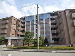 長坂ネスル・ガゼボ62