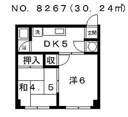高津マンション[3B号室号室]の間取り