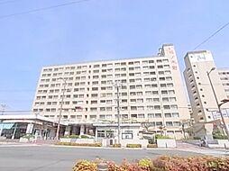 松ノ木町団地1号棟[512号室]の外観