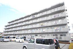 埼玉県越谷市平方南町の賃貸マンションの外観