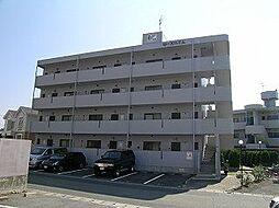 熊本県熊本市南区出仲間1丁目の賃貸マンションの外観