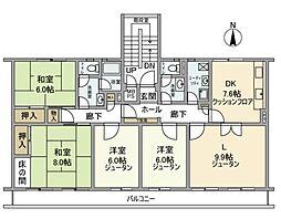 千葉県白井市大山口2丁目の賃貸マンションの間取り