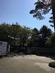 HOUSEマメニティ3[4階]の外観