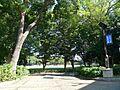 【公園】赤塚公...