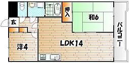 福岡県北九州市八幡東区槻田2丁目の賃貸マンションの間取り