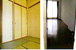 神奈川県川崎市中原区上小田中6丁目の賃貸マンションの外観