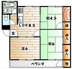 福岡県北九州市若松区東小石町の賃貸マンションの間取り