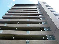 レインボーコートパートIII[11階]の外観