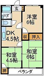 大阪府寝屋川市成田町の賃貸マンションの間取り