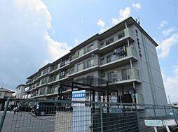 ロイヤルハイツ[3階]の外観