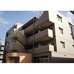 神奈川県川崎市幸区南加瀬1丁目の賃貸マンションの外観