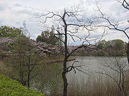 池を眺めながらのジョギングは気持ちよさそう 徒歩 約1分(約80m)