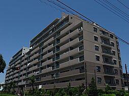 レクセルガーデン志津[2階]の外観