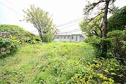敷地内より 南側のお庭です