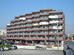 埼玉県川口市上青木1の賃貸マンションの外観