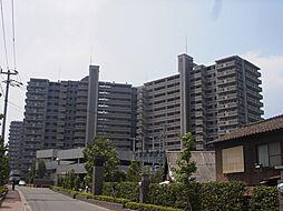 エバーライフネアシティ久留米弐番館[402号室]の外観