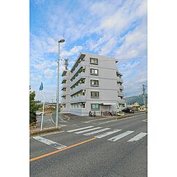 岡山県岡山市中区賞田の賃貸マンションの外観