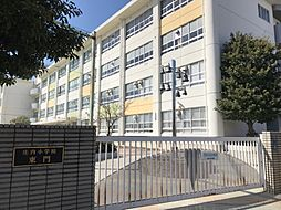 庄内小学校 徒歩11分(870m)