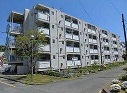 神奈川県横須賀市浦上台4丁目の賃貸マンションの外観