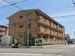 愛知県北名古屋市中之郷四辻の賃貸マンションの外観