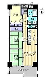 岡山県岡山市北区西古松西町丁目なしの賃貸マンションの間取り