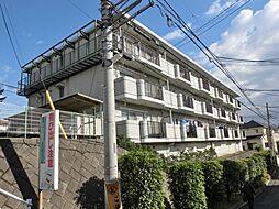 神奈川県相模原市南区上鶴間1丁目の賃貸マンションの外観