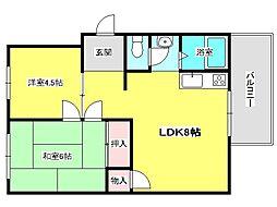 兵庫県神戸市垂水区上高丸1丁目の賃貸マンションの間取り