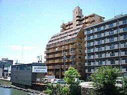 岩井橋ロイヤルハイツ[12階]の外観