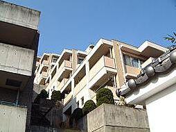 エーワイハイツ寺塚[11階]の外観