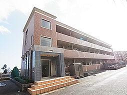 千葉県松戸市紙敷の賃貸マンションの外観